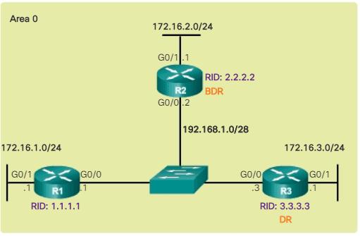 Topología OSPF de referencia de difusión de accesos múltiples