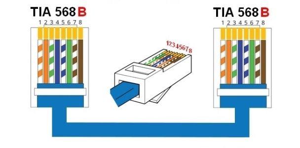 TIA EIA T568B para Cable directo