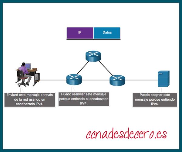 Función protocolo de red