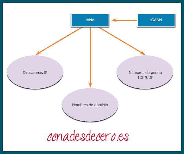 Organizaciones TCP IP