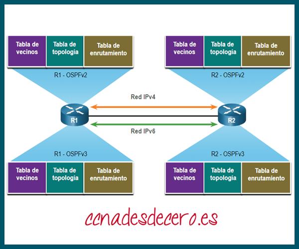 Estructuras de datos OSPFv2 y OSPFv3