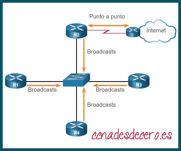 Tipos de Redes OSPF