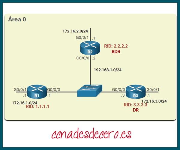 Topología de Referencia OSPF de Acceso Múltiple