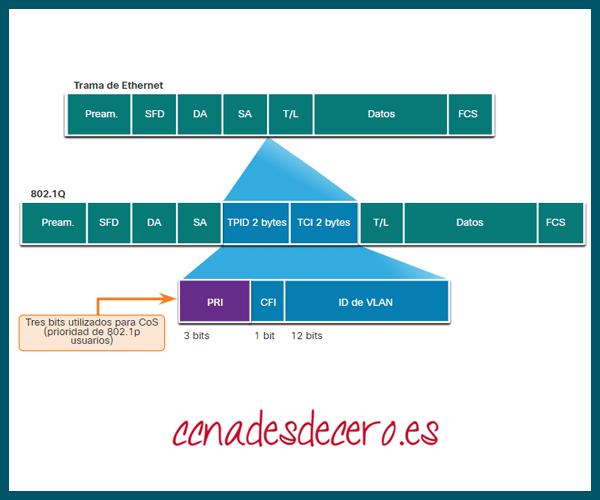 Valores de Clase de Servicio Ethernet